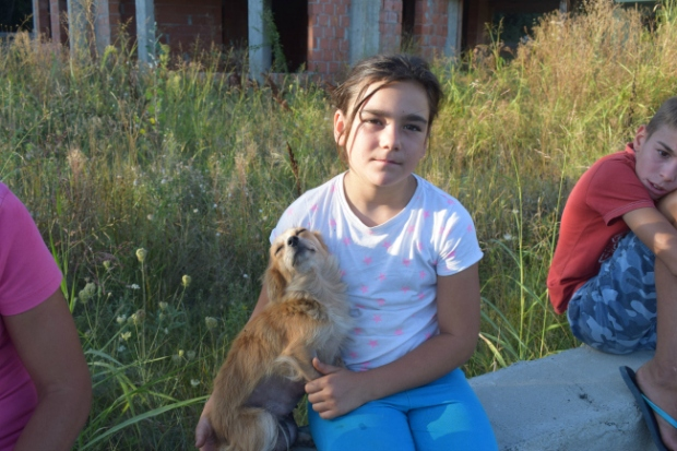 Tyttö ja koira Tantavassa